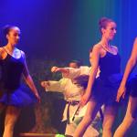 SN17_03_Showact_Karate-Ballett_12