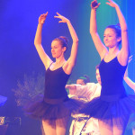 SN17_03_Showact_Karate-Ballett_13
