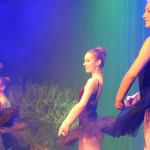 SN17_03_Showact_Karate-Ballett_18