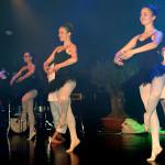 SN17_03_Showact_Karate-Ballett_3